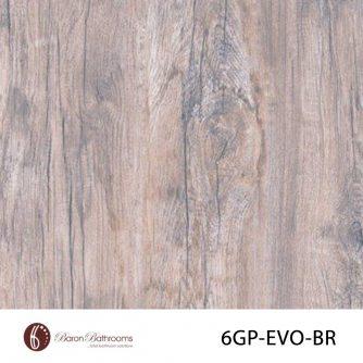 6GP-EVO-BR